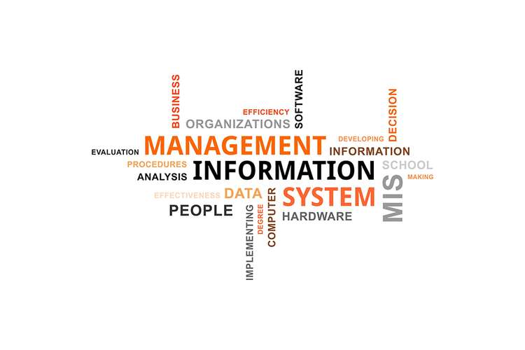 management information systems 2 essay Management information systems web site online graduate programs at the  florida state university  time to completion 24 months (2 courses per  semester).