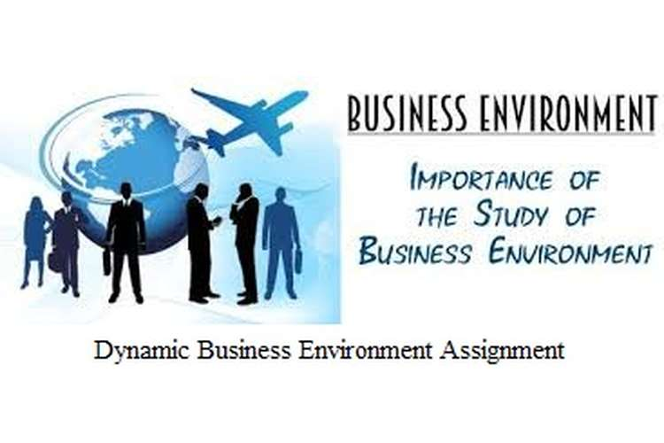 Unit 1 Impact of Dynamic Business Environment Assignment