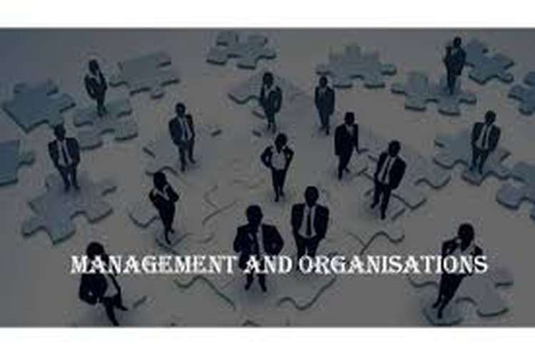 Organizations in Global Environment OZ Assignments