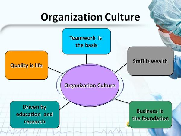 organisation structures influencing culture and work design Technology includes the knowledge, machinery, work procedures, and materials that convert the inputs into outputs the technology used to manufacture the products decides the kind of the organisation for the production system.
