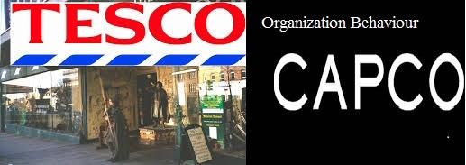 Unit 3 Organization Behaviour Assignment Capco Amp Tesco