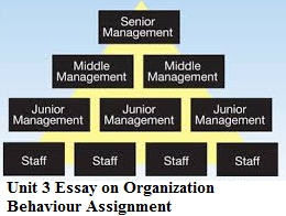 Essay about organizational behaviour