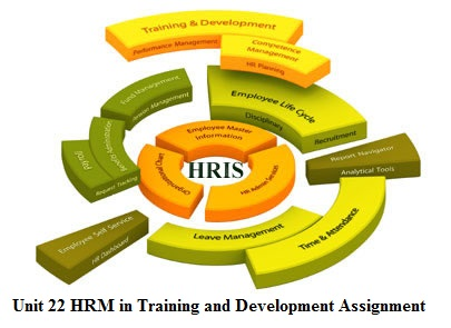 hrm case studies on training and development Employee training & development case studies college for america helps employers nationwide improve employee training & development through a flexible and affordable college degree program.