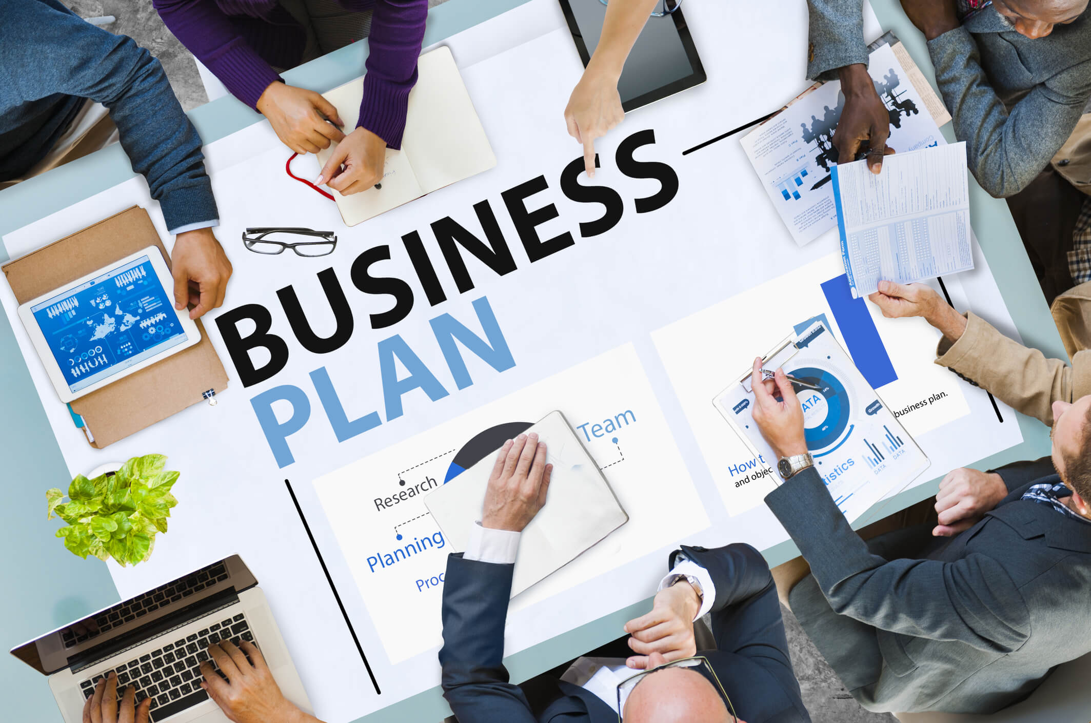 Business plan help nz