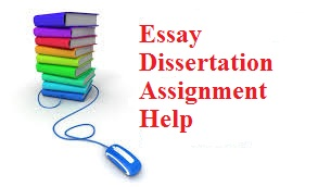 Example Of A Essay Paper  How To Write A Proposal Essay Example also English Language Essays Essay Dissertation Assignment Help  Oz Assignment Help English Essay Outline Format