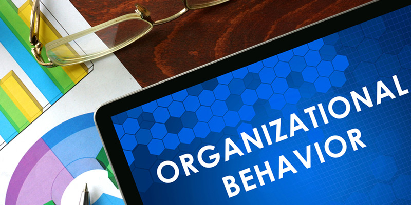 Organizational behavior homework help assignment