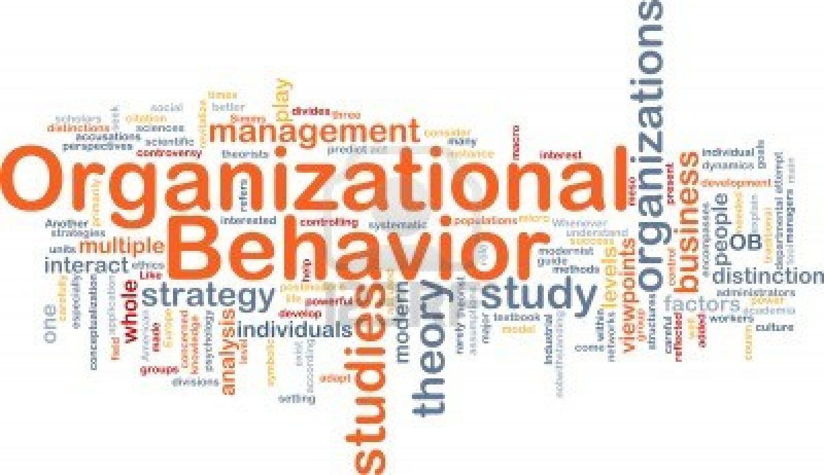 organisational behaviour essay pdf