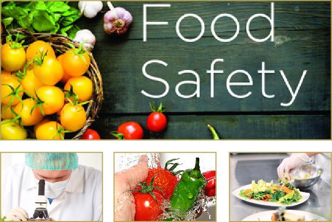Unit 31 Food Safety Management Assignment Copy - Locus Help