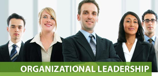 organizational leadership Assignment, Assignment help, Assignment Help UK, Online Assignment Help