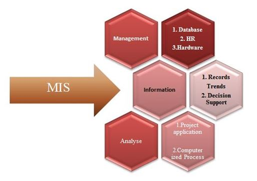 MIS101 Management Information Systems Assignment, Management Information Systems Assignment, Assignment Help, Assignment Help Australia, Online Assignment Help, Oz Assignment Help