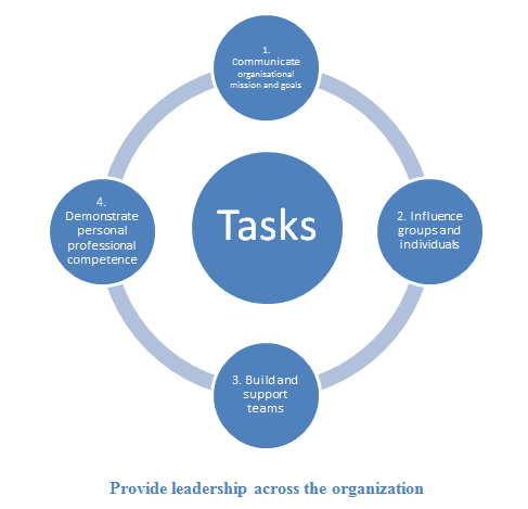 Provide leadership across the organization