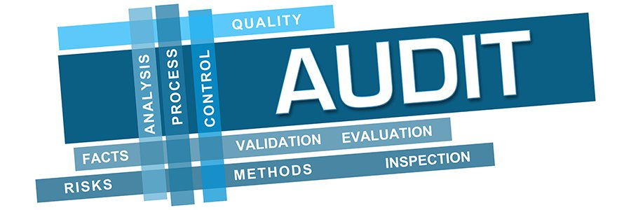 ACC305 Auditing and Professional Practice Assignment
