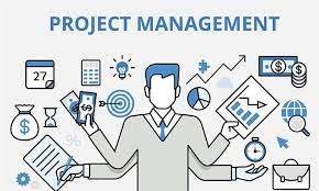 HS2061 Information Systems Project Management Assignment