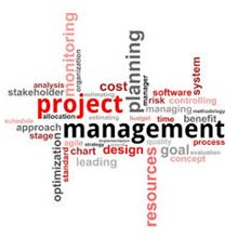 Leadership in IT Management Project