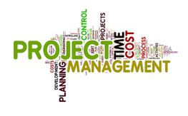 Preliminary project requirements