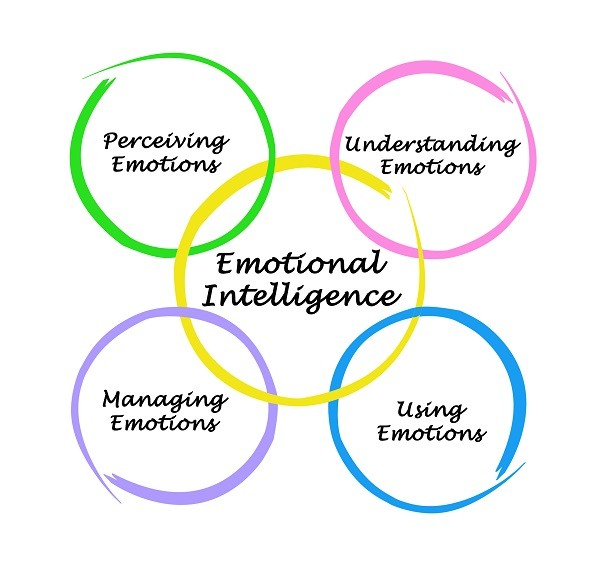 BSBLDR501 Develop and use Emotional Intelligence Assignment