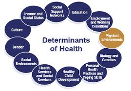 HEA8302 Culture as a Determinant of Health Assignment Help