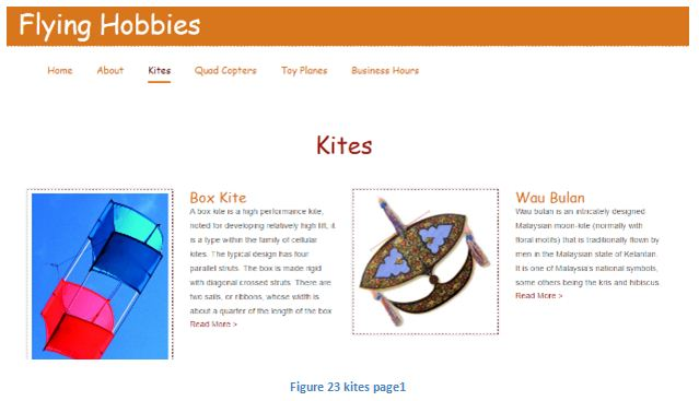 Website screenshots kites page