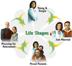 NRS221 Life Stage Considerations Assignment Help