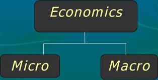 ECO 101 Microeconomics Assignment Help