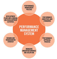 BSBHRM512A Develop and Manage Performance Management Assignment
