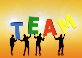 MGMT6009 Managing People and Teams Assignment Help