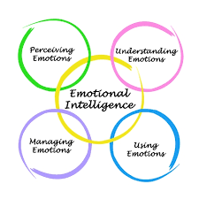 BSBLDR501 Develop and use Emotional Intelligence Assignment Help