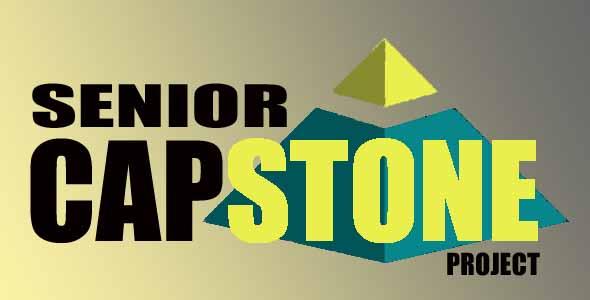 HI6008 Capstone Project Management Assignment