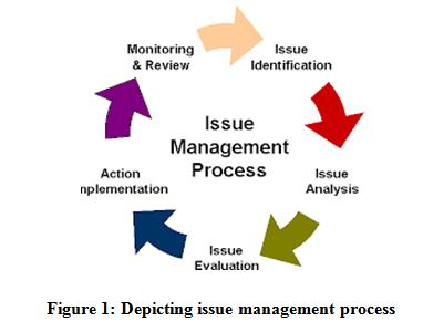Depicting issue management process