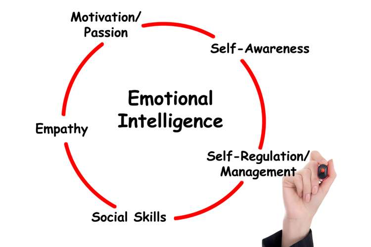 BSBLDR501 Develop and Use Emotional Intelligence