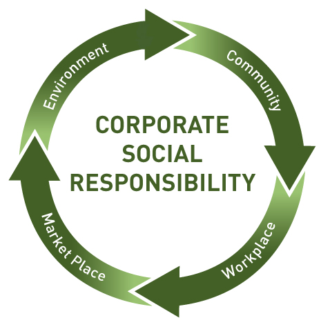 Communicating Corporate Social Responsibility Assignment Help