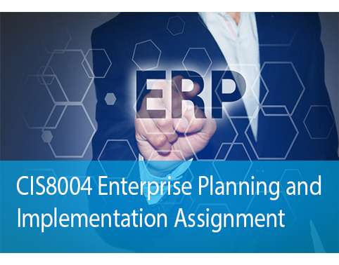 Enterprise Planning Implementation Assignment