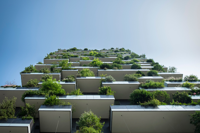 Keep your home green