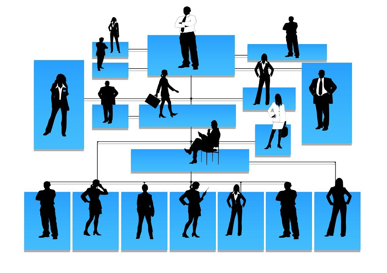 BSBMKG608 Develop Organizational Marketing Objectives Assignment Help