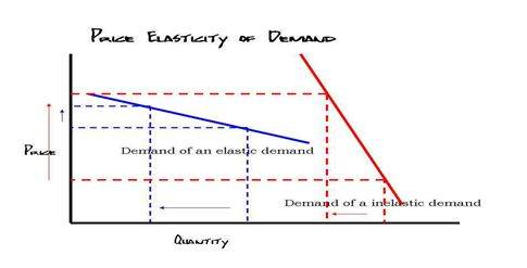 Percentage change in the quantity demanded