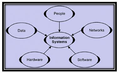 Information system in organizations