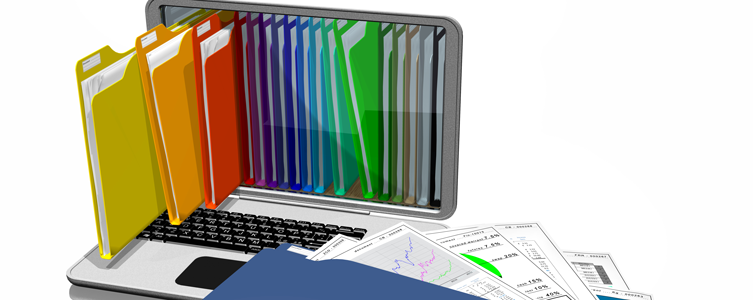 Information Systems Sourcing
