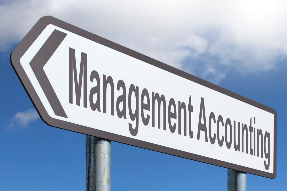 ACCT6004 Management Accounting OZ Assignments